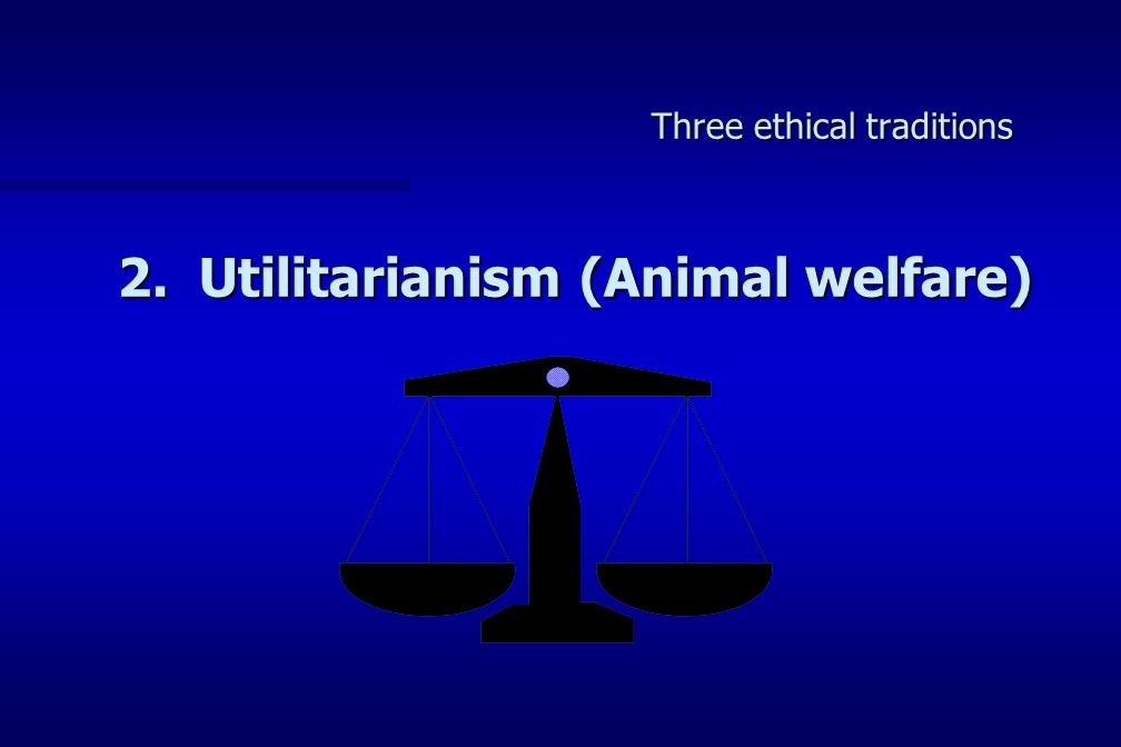 Three ethical traditions 2. Utilitarianism (Animal welfare)