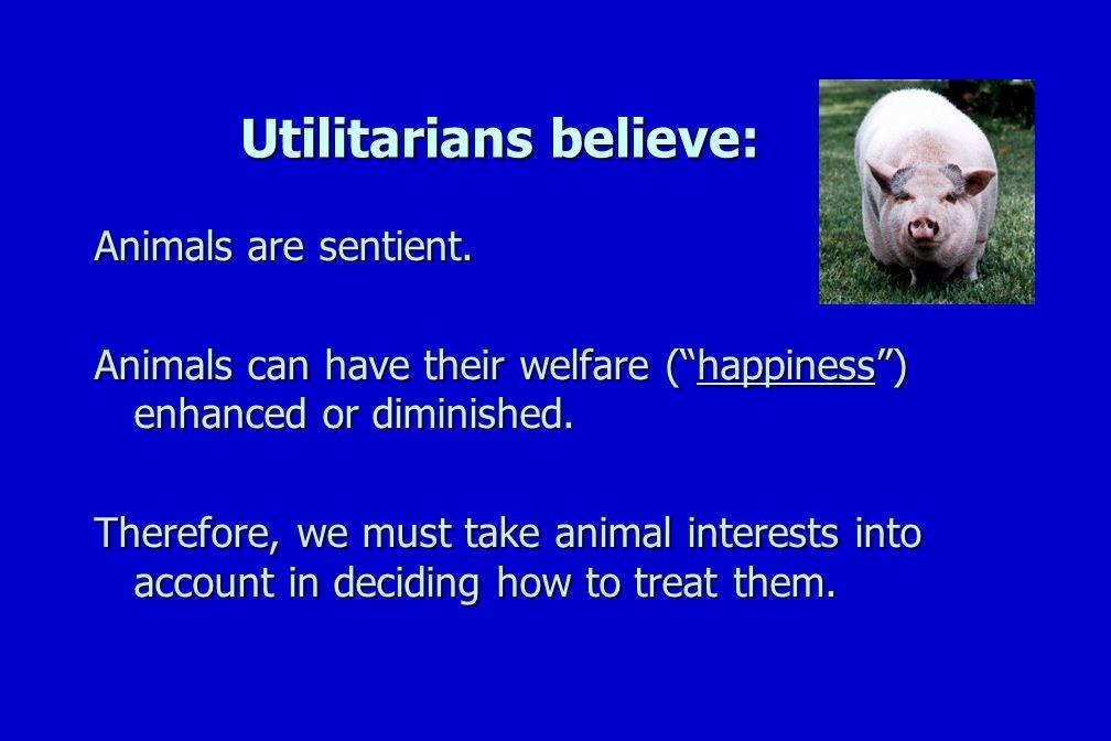 Utilitarians believe: Animals are sentient.