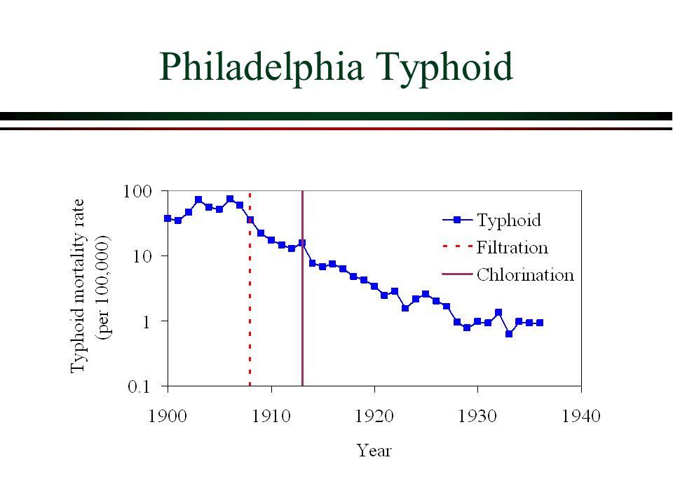 Philadelphia Typhoid