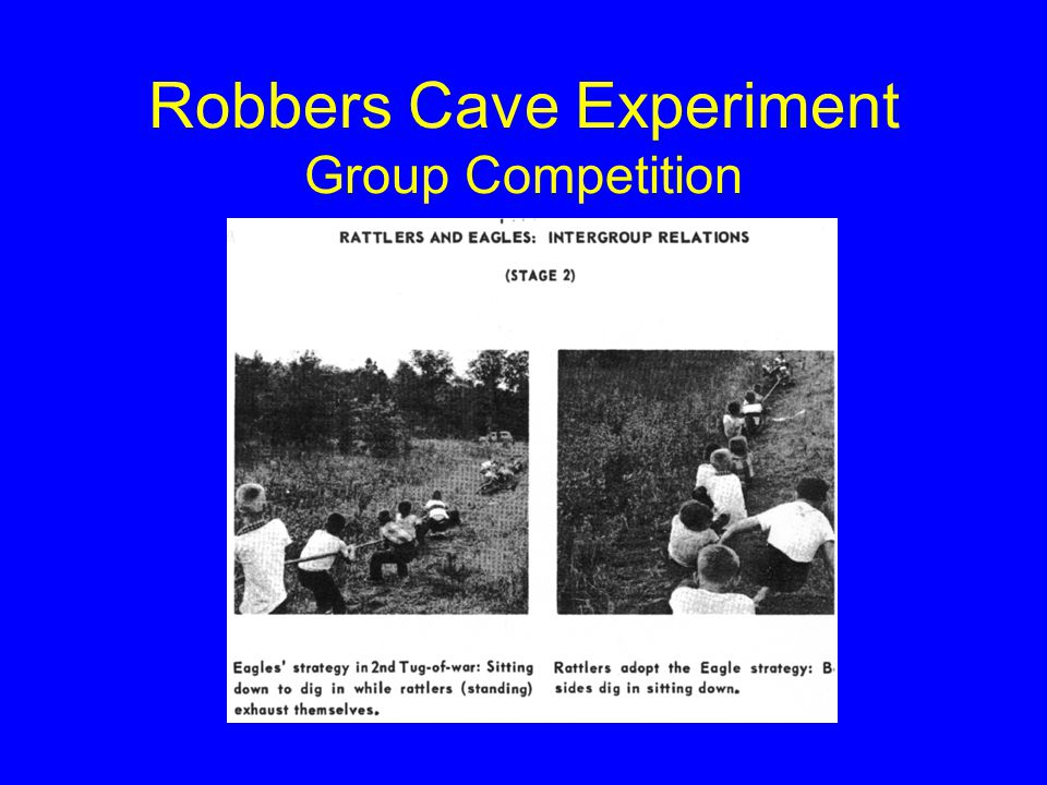 Robbers Cave Experiment Group Competition