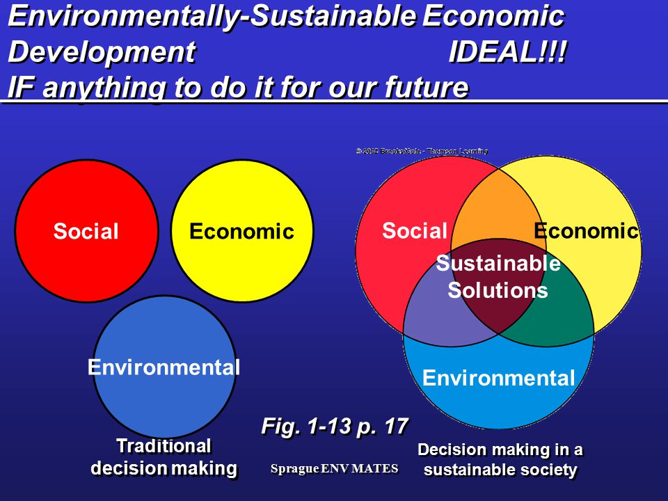 Sprague ENV MATES Environmentally-Sustainable Economic Development IDEAL!!! IF anything to do it for our future Fig. 1-13 p. 17 Decision making in a s