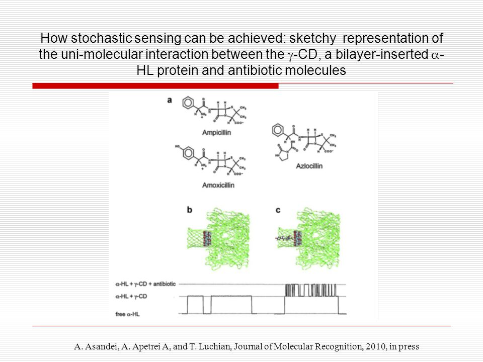 How stochastic sensing can be achieved: sketchy representation of the uni-molecular interaction between the  -CD, a bilayer-inserted  - HL protein and antibiotic molecules A.
