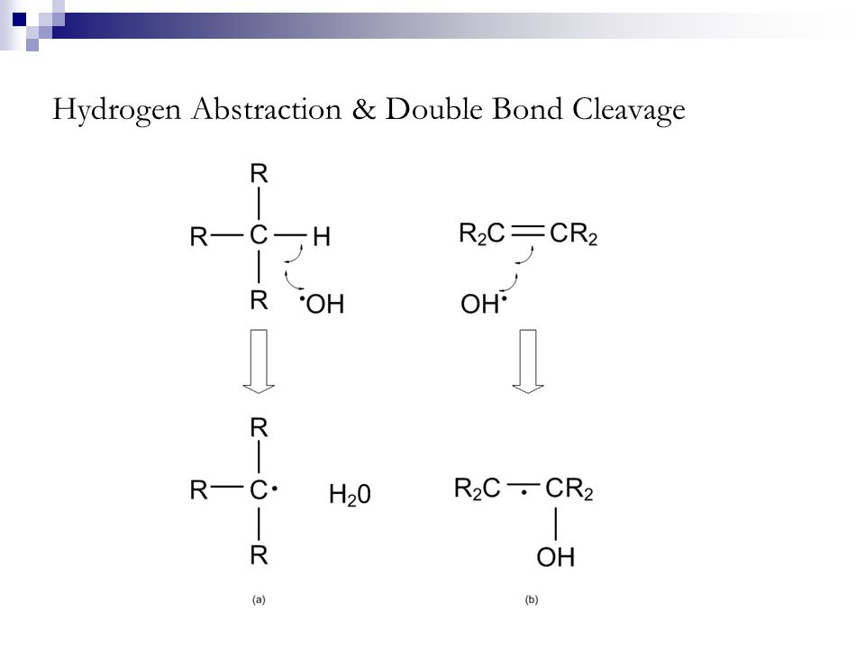 Hydrogen Abstraction & Double Bond Cleavage
