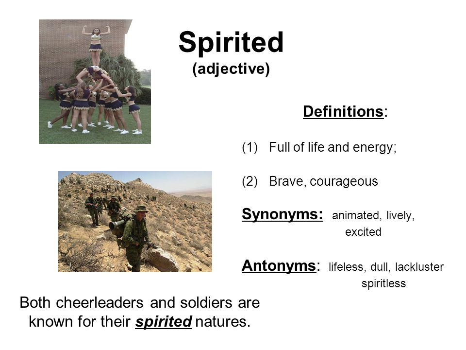 Spirited (adjective) Definitions: (1)Full of life and energy; (2)Brave, courageous Synonyms: animated, lively, excited Antonyms: lifeless, dull, lackl