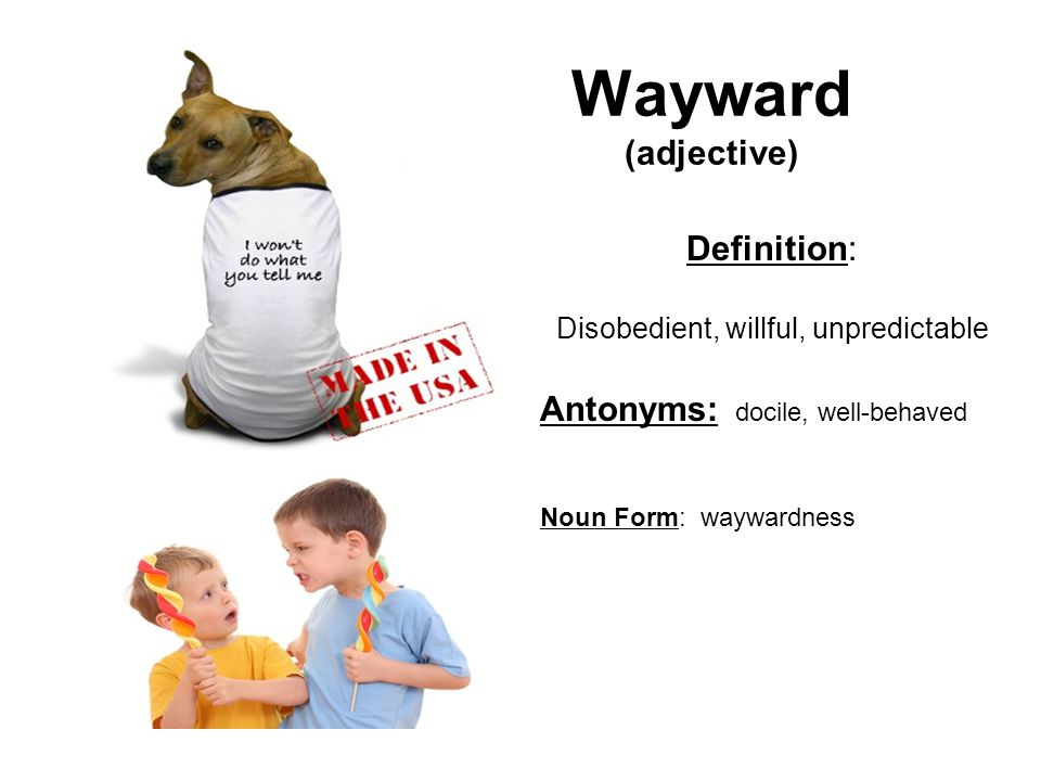 Wayward (adjective) Definition: Disobedient, willful, unpredictable Antonyms: docile, well-behaved Noun Form: waywardness