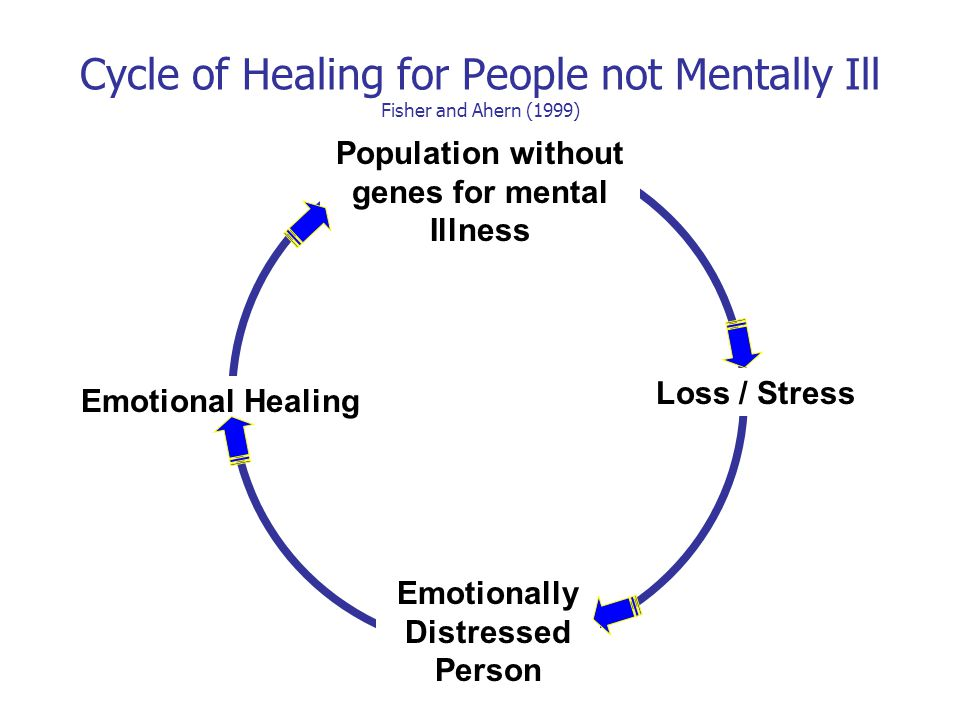 Population without genes for mental Illness Loss / Stress Emotionally Distressed Person Emotional Healing Cycle of Healing for People not Mentally Ill Fisher and Ahern (1999)