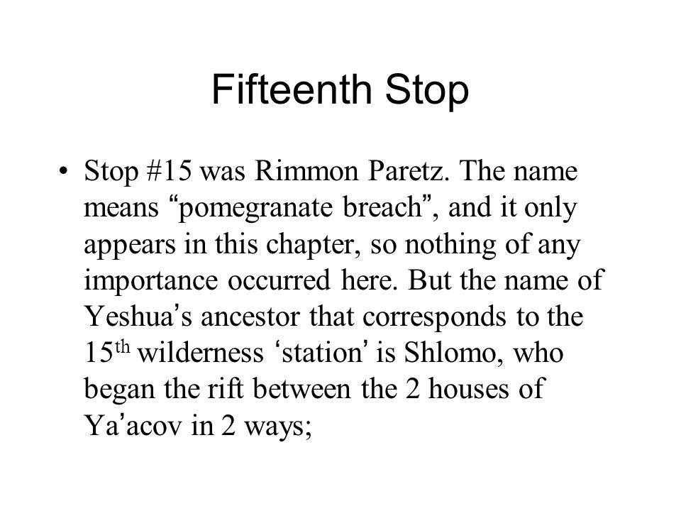 Fifteenth Stop Stop #15 was Rimmon Paretz.