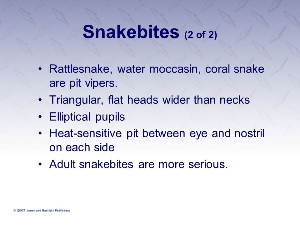 Snakebites (2 of 2) Rattlesnake, water moccasin, coral snake are pit vipers.