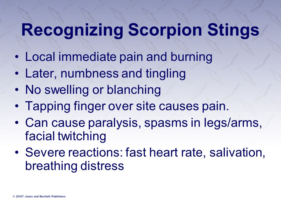 Recognizing Scorpion Stings Local immediate pain and burning Later, numbness and tingling No swelling or blanching Tapping finger over site causes pain.
