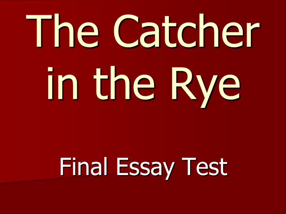 essays on catcher in the rye catcher in the rye essay the three  catcher rye summary essay < custom paper service catcher rye summary essay
