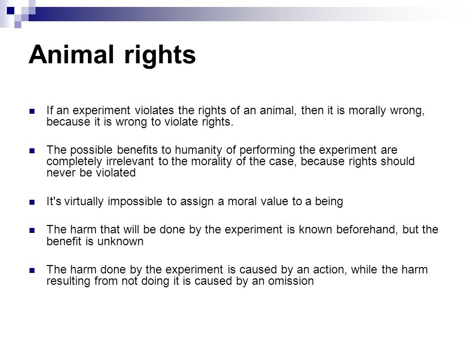 Animal rights If an experiment violates the rights of an animal, then it is morally wrong, because it is wrong to violate rights.