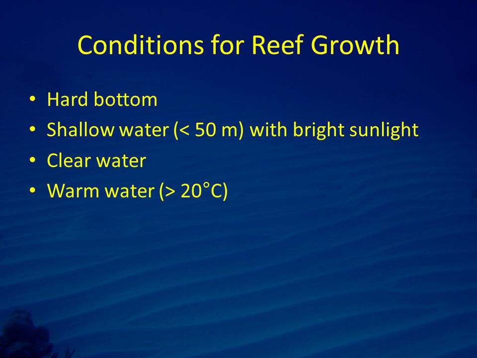 Conditions for Reef Growth Hard bottom Shallow water (< 50 m) with bright sunlight Clear water Warm water (> 20°C)