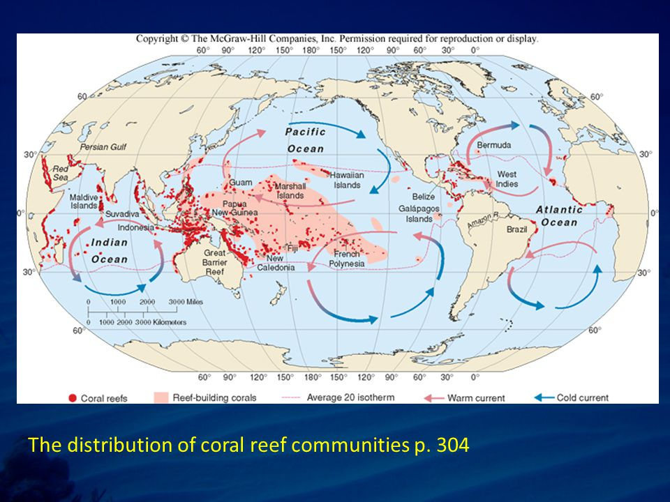 The distribution of coral reef communities p. 304