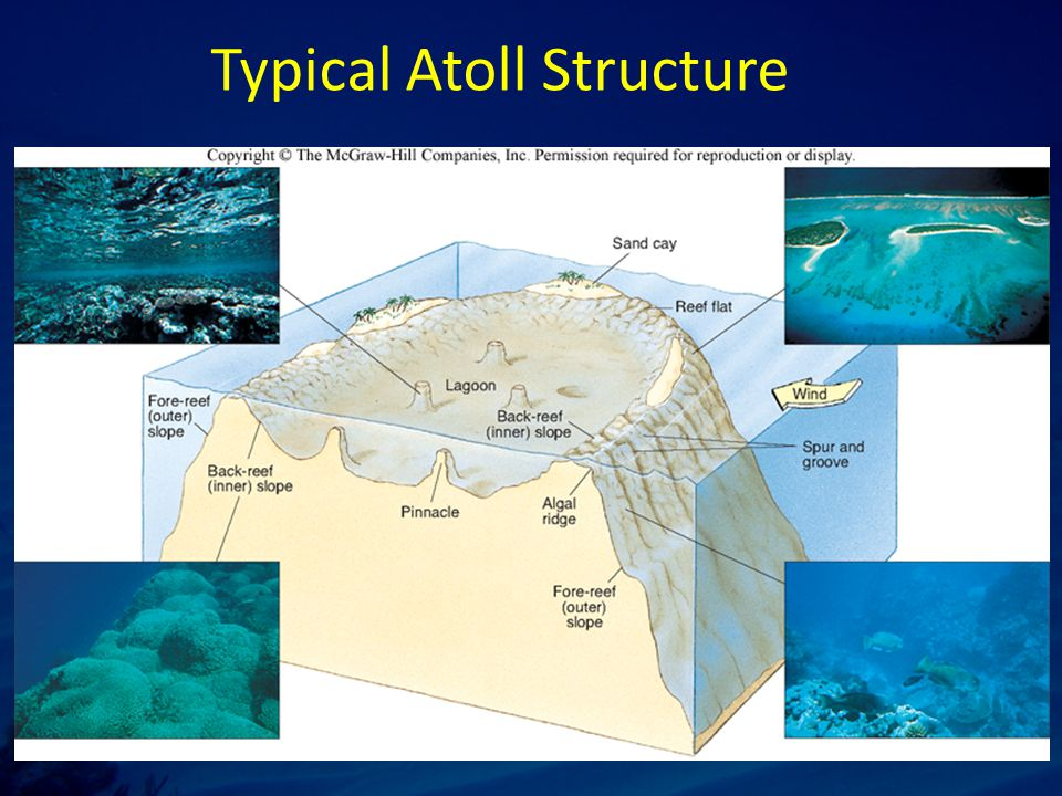 Typical Atoll Structure