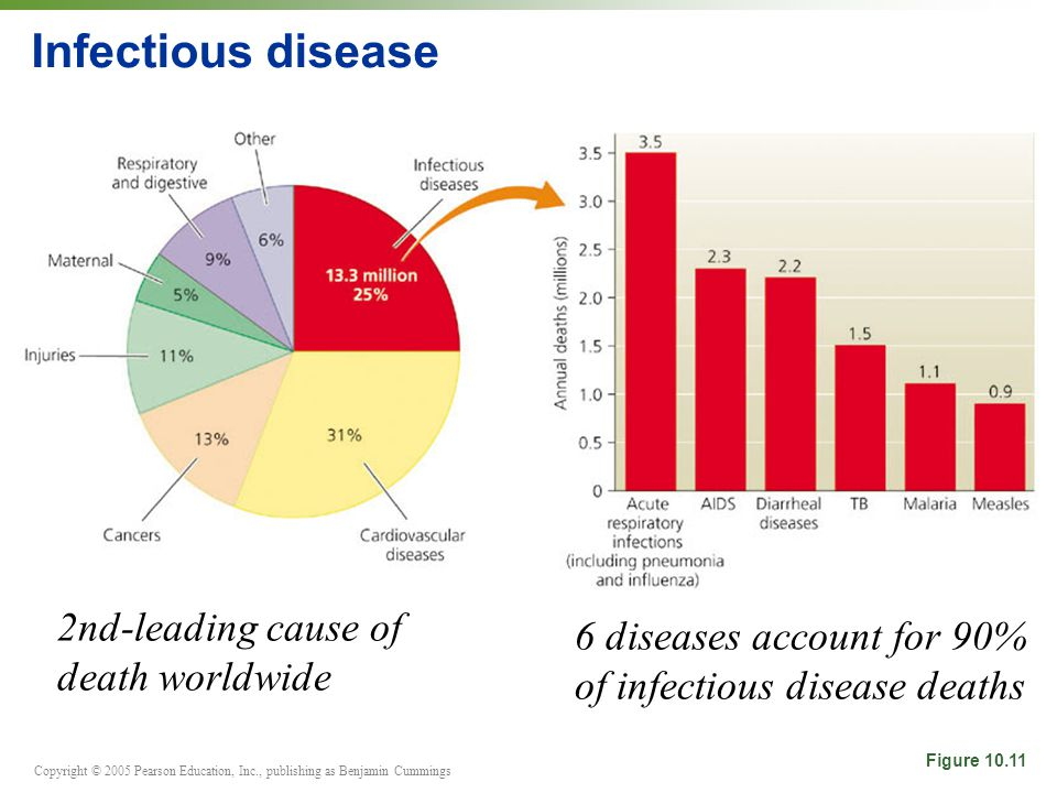 Copyright © 2005 Pearson Education, Inc., publishing as Benjamin Cummings Infectious disease Figure 10.11 2nd-leading cause of death worldwide 6 disea
