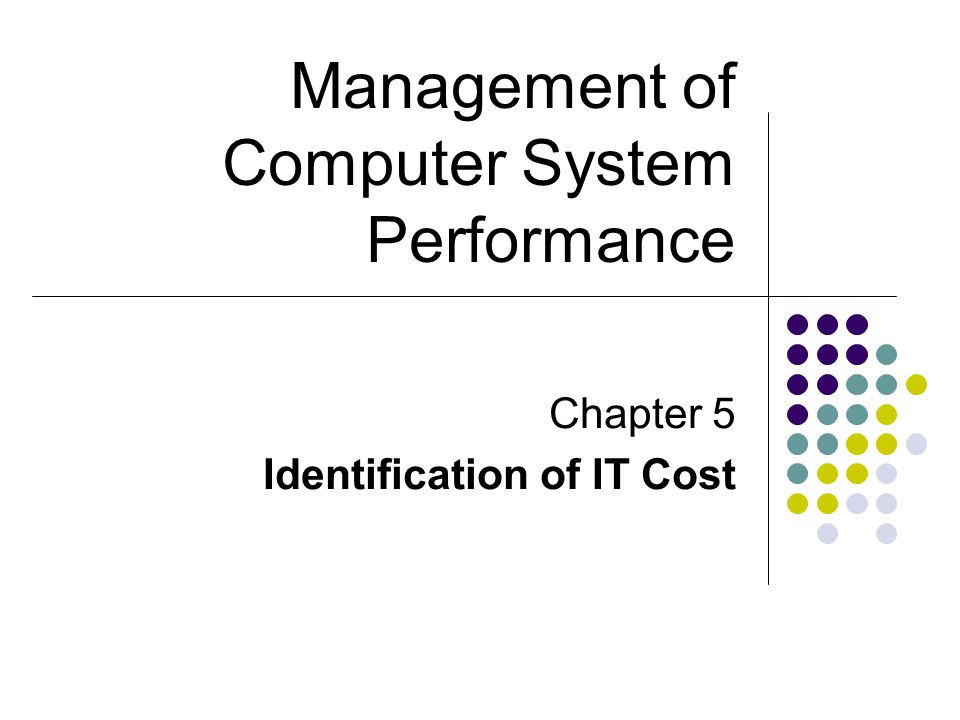 Chapter 5 Identification of IT Cost Management of Computer System Performance