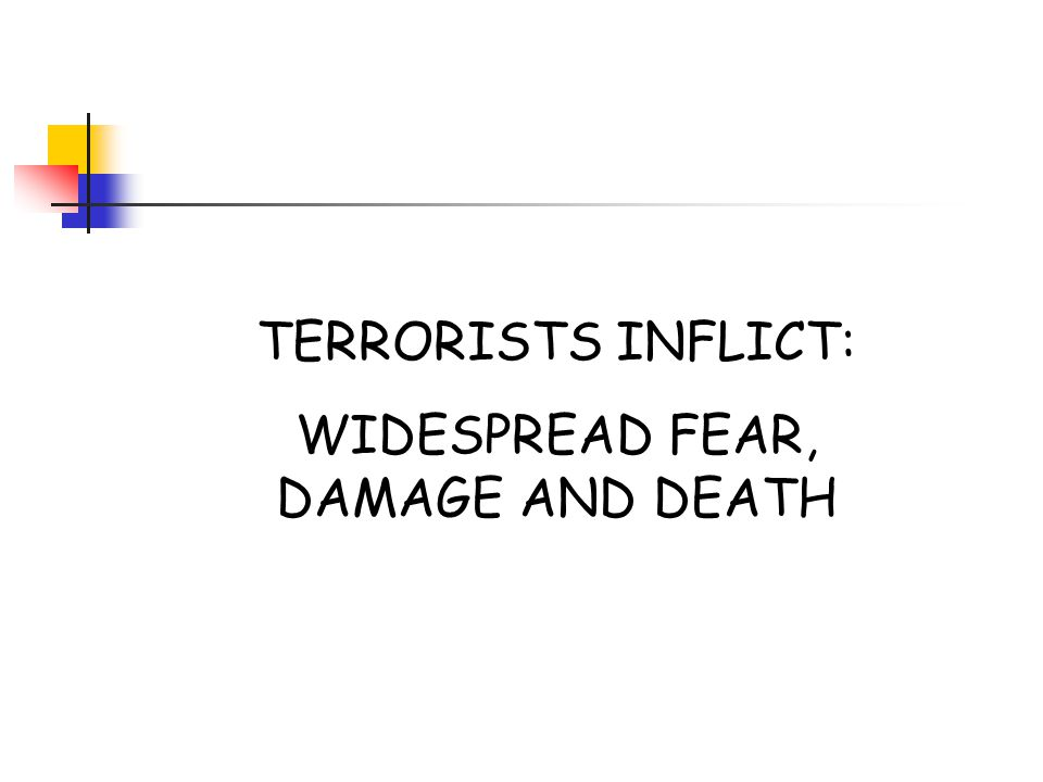 TERRORISTS INFLICT: WIDESPREAD FEAR, DAMAGE AND DEATH