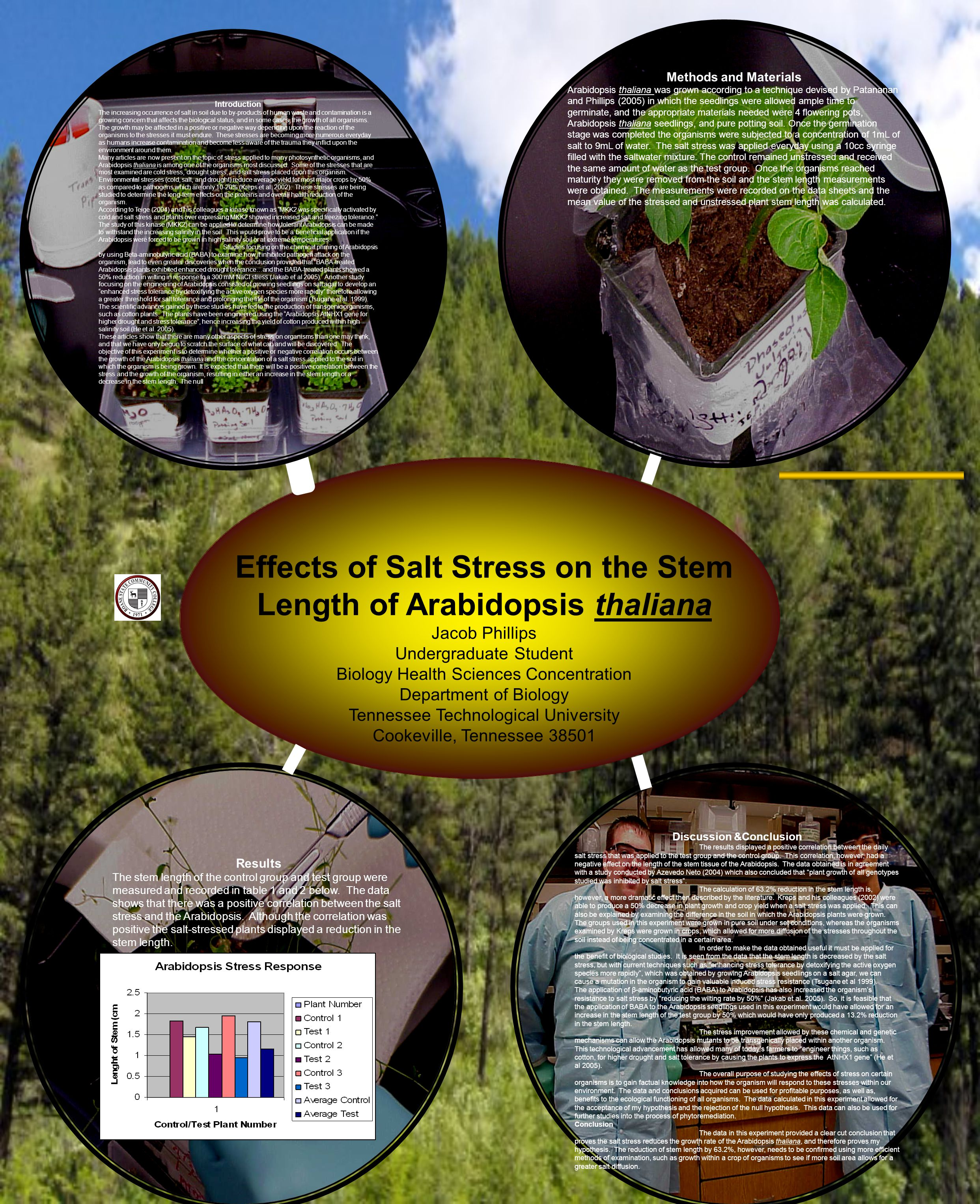 Effects of Salt Stress on the Stem Length of Arabidopsis thaliana Jacob Phillips Undergraduate Student Biology Health Sciences Concentration Department of Biology Tennessee Technological University Cookeville, Tennessee 38501 Introduction The increasing occurrence of salt in soil due to by-products of human waste and contamination is a growing concern that affects the biological status, and in some cases, the growth of all organisms.