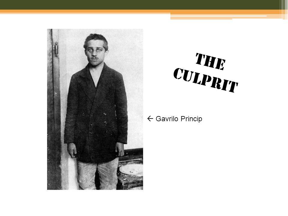  Gavrilo Princip THE CULPRIT