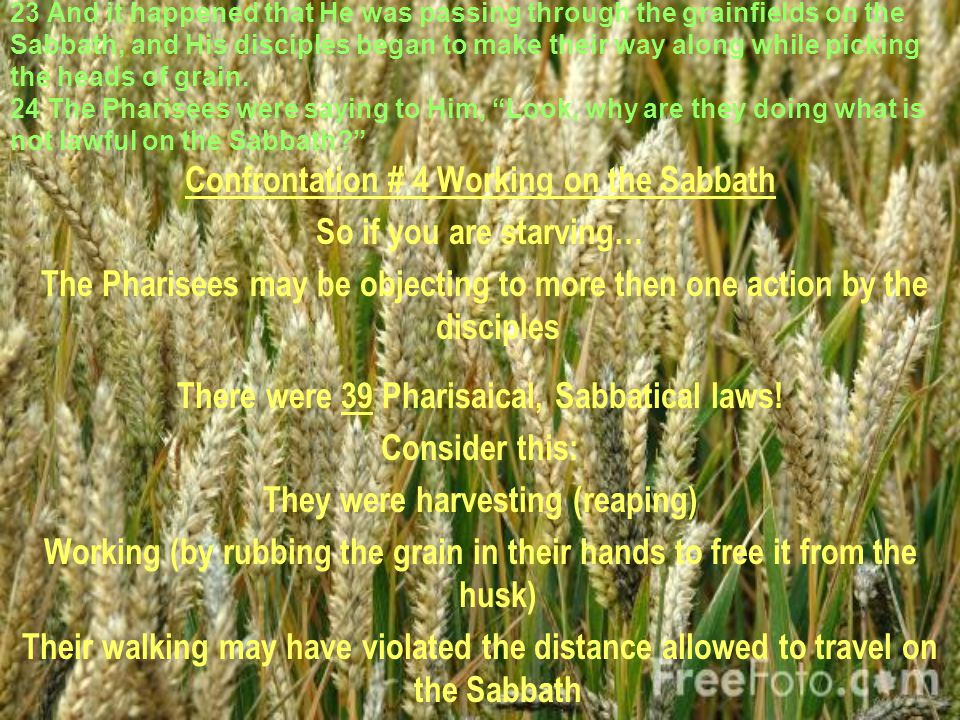 23 And it happened that He was passing through the grainfields on the Sabbath, and His disciples began to make their way along while picking the heads of grain.