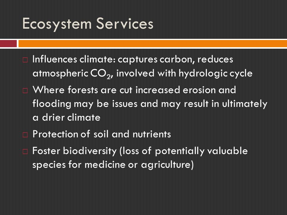 Ecosystem Services  Influences climate: captures carbon, reduces atmospheric CO 2, involved with hydrologic cycle  Where forests are cut increased erosion and flooding may be issues and may result in ultimately a drier climate  Protection of soil and nutrients  Foster biodiversity (loss of potentially valuable species for medicine or agriculture)