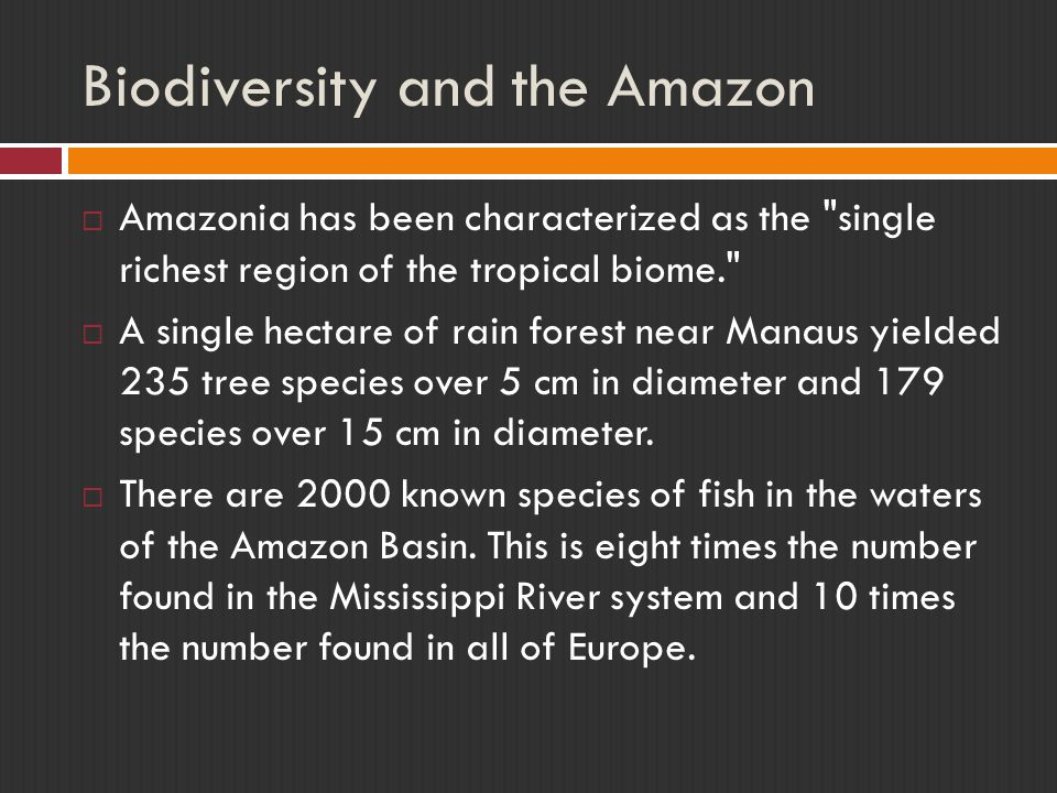 Biodiversity and the Amazon  Amazonia has been characterized as the single richest region of the tropical biome.  A single hectare of rain forest near Manaus yielded 235 tree species over 5 cm in diameter and 179 species over 15 cm in diameter.