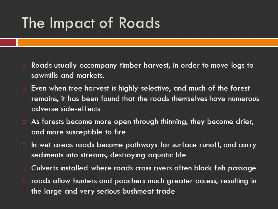 The Impact of Roads  Roads usually accompany timber harvest, in order to move logs to sawmills and markets.  Even when tree harvest is highly select