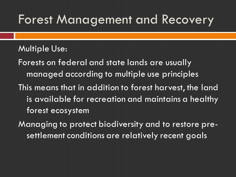 Forest Management and Recovery Multiple Use: Forests on federal and state lands are usually managed according to multiple use principles This means that in addition to forest harvest, the land is available for recreation and maintains a healthy forest ecosystem Managing to protect biodiversity and to restore pre- settlement conditions are relatively recent goals