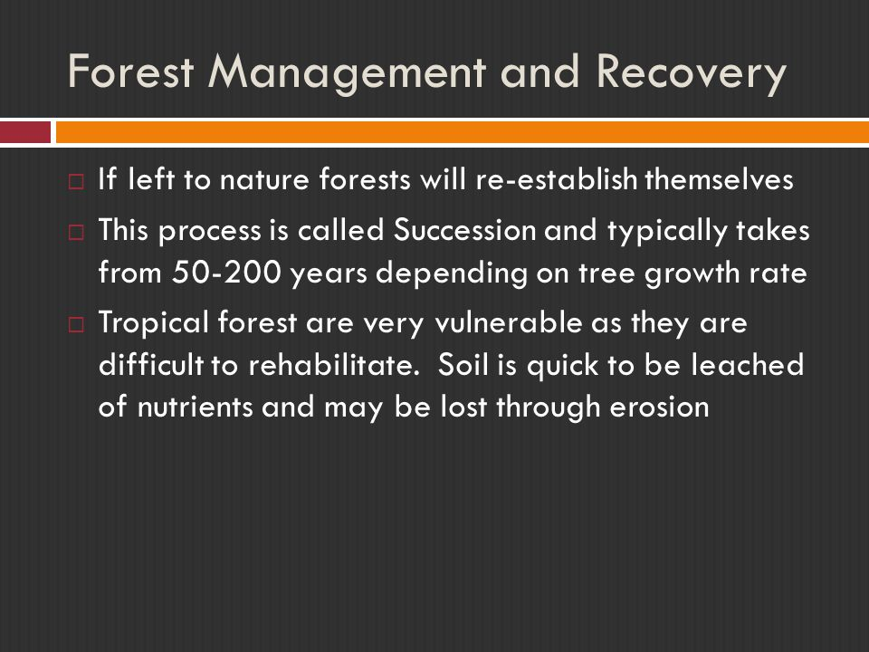 Forest Management and Recovery  If left to nature forests will re-establish themselves  This process is called Succession and typically takes from 5