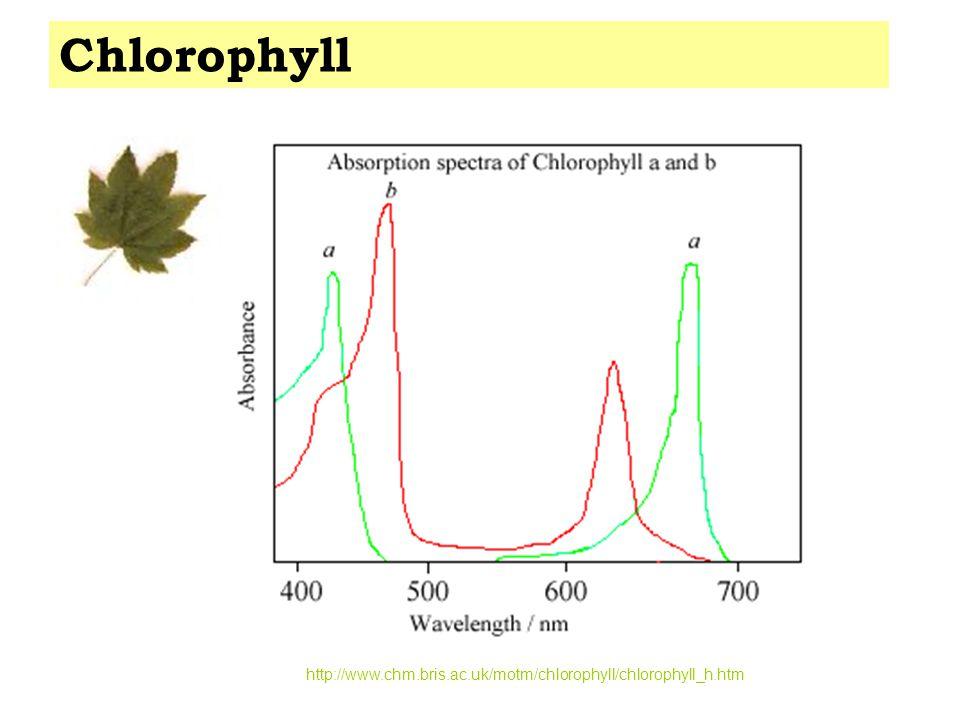 http://www.chm.bris.ac.uk/motm/chlorophyll/chlorophyll_h.htm Chlorophyll