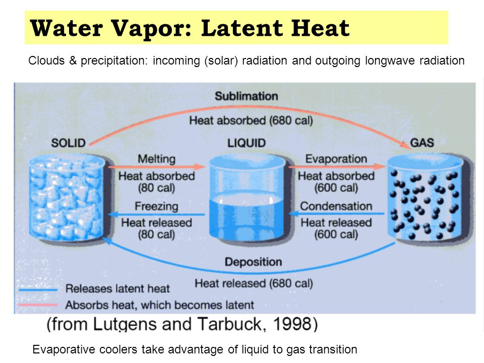 Aquatic Carbon Cycle Rocks and sediments http://www.lenntech.com/carbon-cycle.htm Warming of ocean