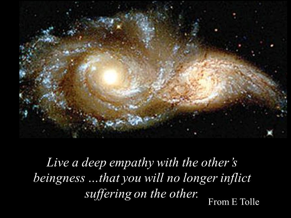 Live a deep empathy with the other's beingness …that you will no longer inflict suffering on the other. From E Tolle