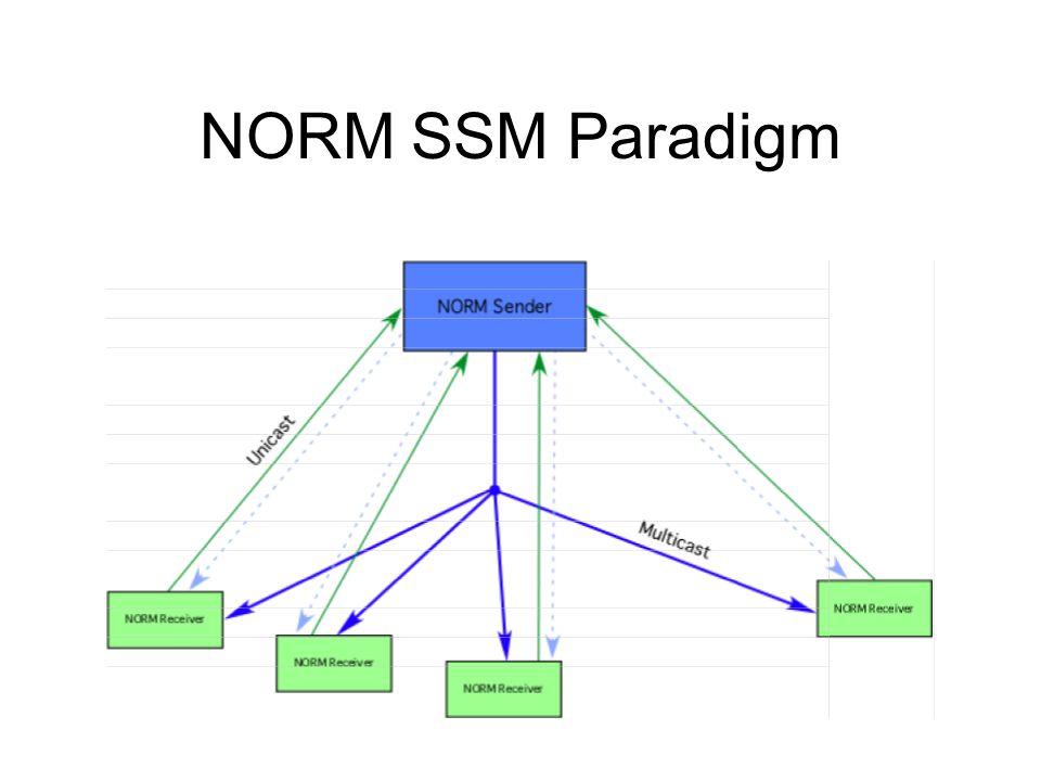 NORM SSM Paradigm