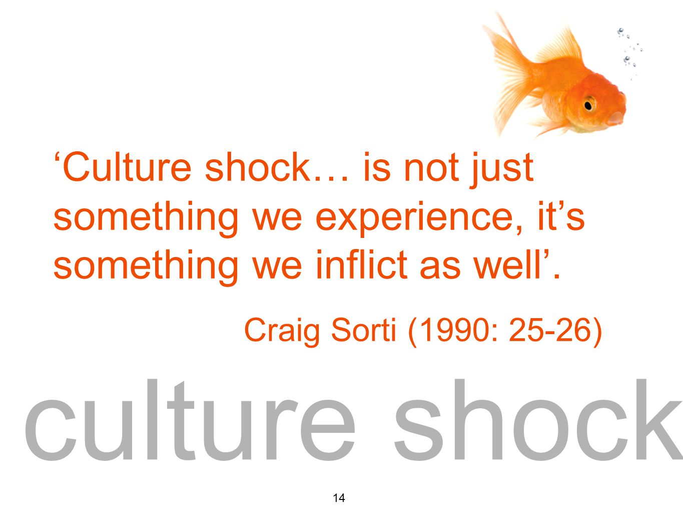 culture shock 14 'Culture shock… is not just something we experience, it's something we inflict as well'.