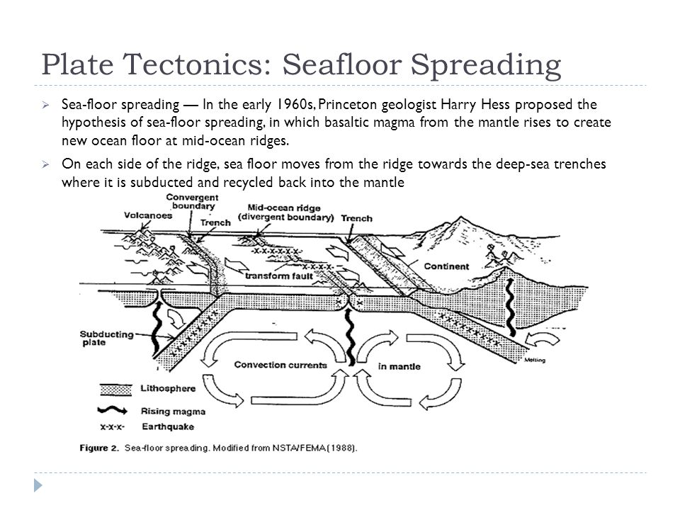 Plate Tectonics: Seafloor Spreading  Sea-floor spreading — In the early 1960s, Princeton geologist Harry Hess proposed the hypothesis of sea-floor sp