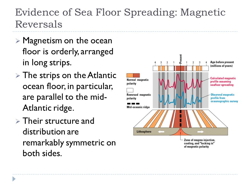 Evidence of Sea Floor Spreading: Magnetic Reversals  Magnetism on the ocean floor is orderly, arranged in long strips.  The strips on the Atlantic o