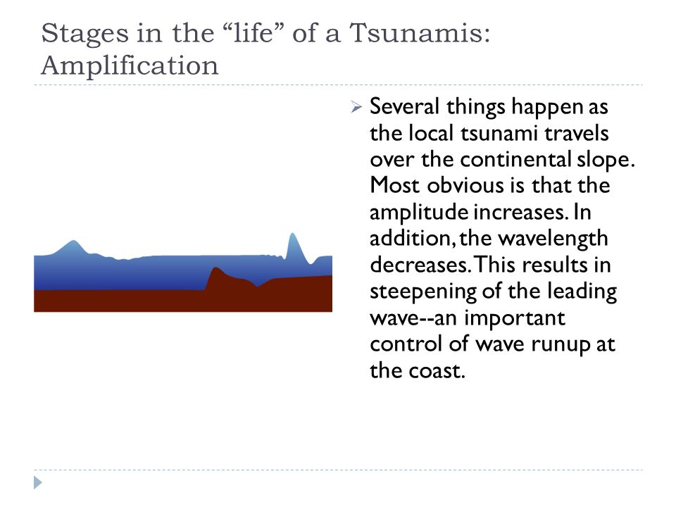 "Stages in the ""life"" of a Tsunamis: Amplification  Several things happen as the local tsunami travels over the continental slope. Most obvious is tha"