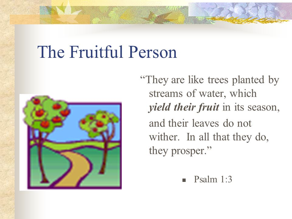 The Fruitful Person They are like trees planted by streams of water, which yield their fruit in its season, and their leaves do not wither.