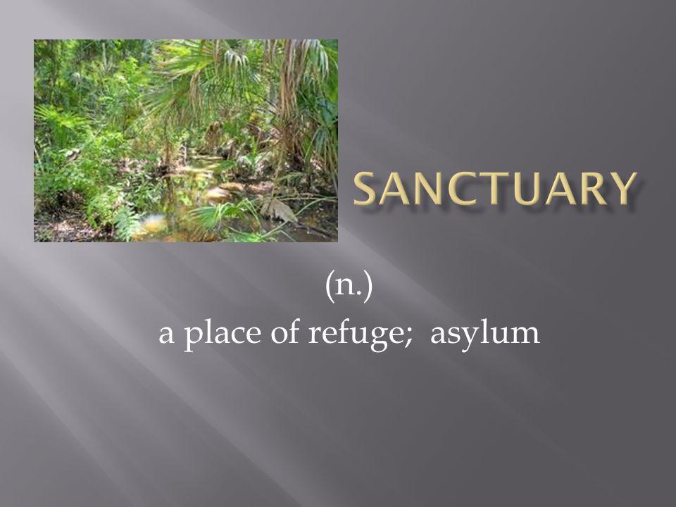 (n.) a place of refuge; asylum