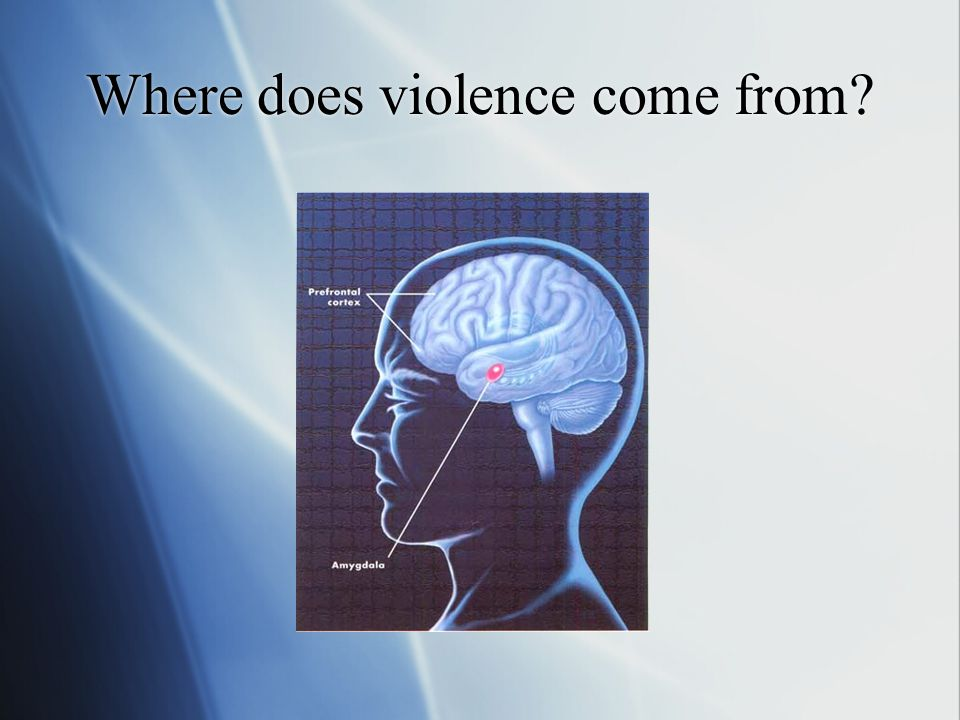 Where does violence come from