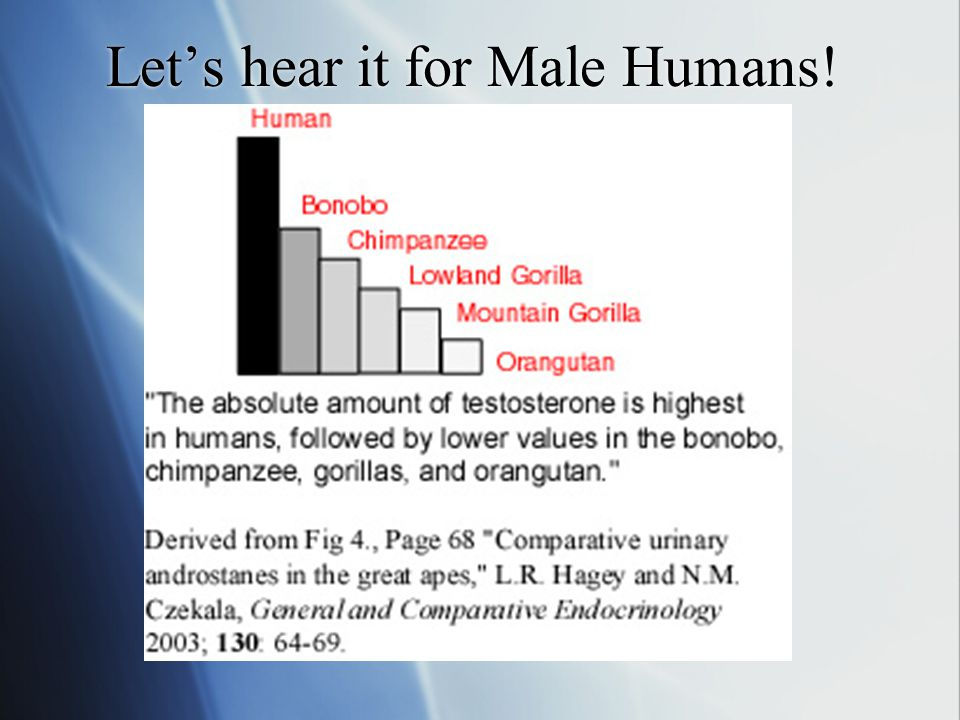 Let's hear it for Male Humans!