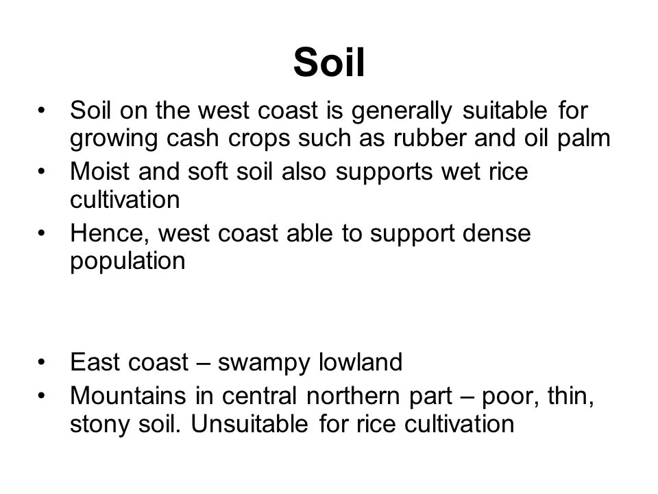 Soil Soil on the west coast is generally suitable for growing cash crops such as rubber and oil palm Moist and soft soil also supports wet rice cultiv