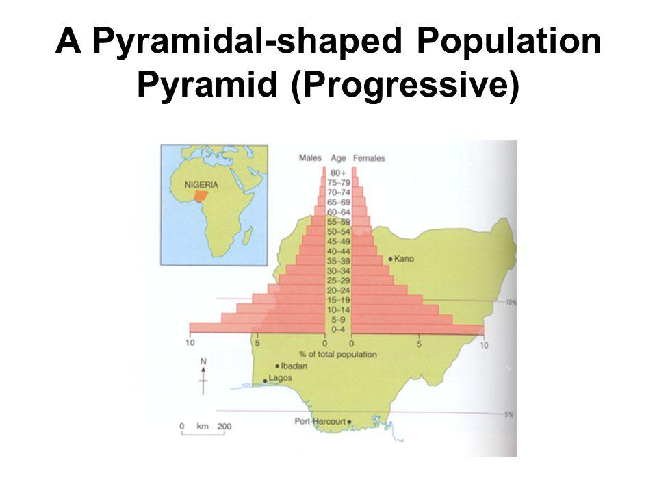 A Pyramidal-shaped Population Pyramid (Progressive)