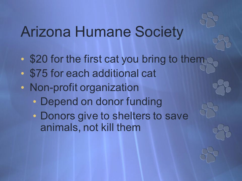 Arizona Humane Society $20 for the first cat you bring to them $75 for each additional cat Non-profit organization Depend on donor funding Donors give to shelters to save animals, not kill them