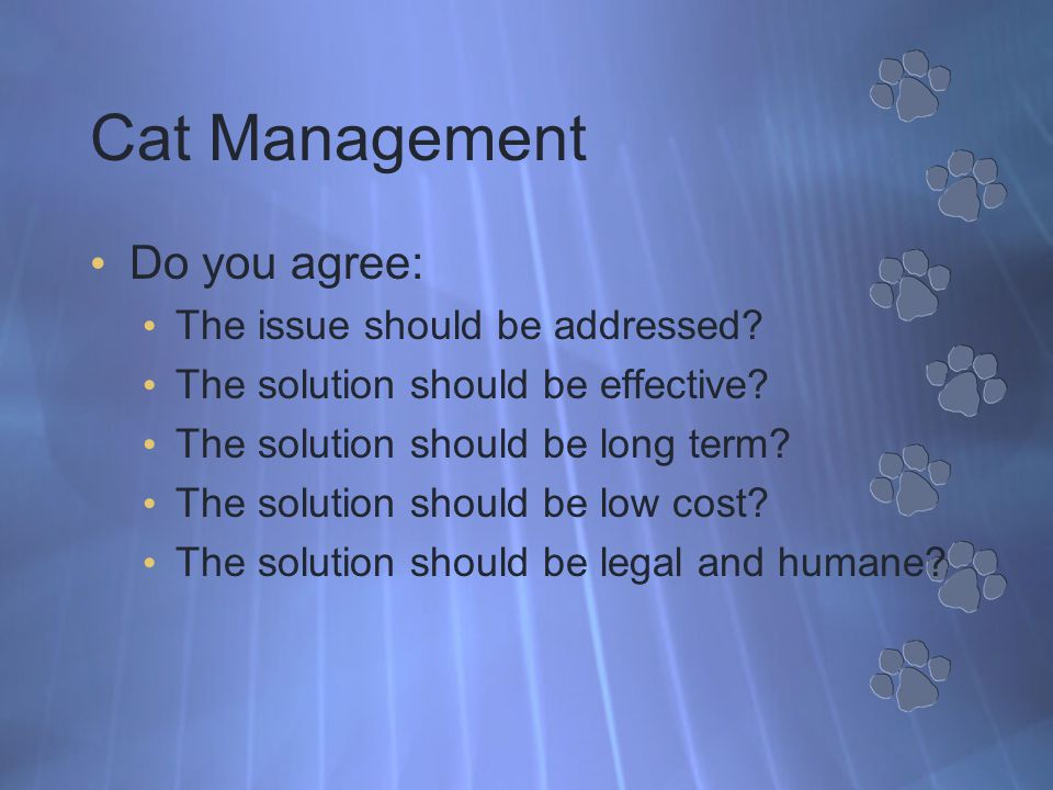 Cat Management Do you agree: The issue should be addressed.