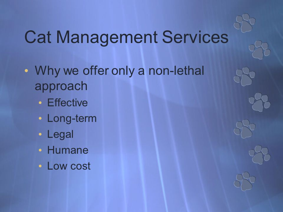 Cat Management Services Why we offer only a non-lethal approach Effective Long-term Legal Humane Low cost