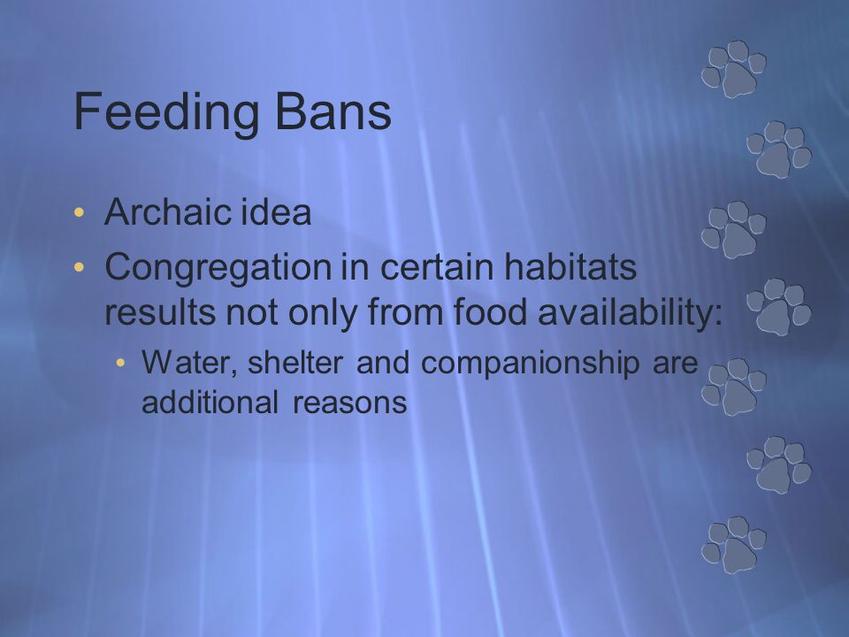 Feeding Bans Archaic idea Congregation in certain habitats results not only from food availability: Water, shelter and companionship are additional reasons