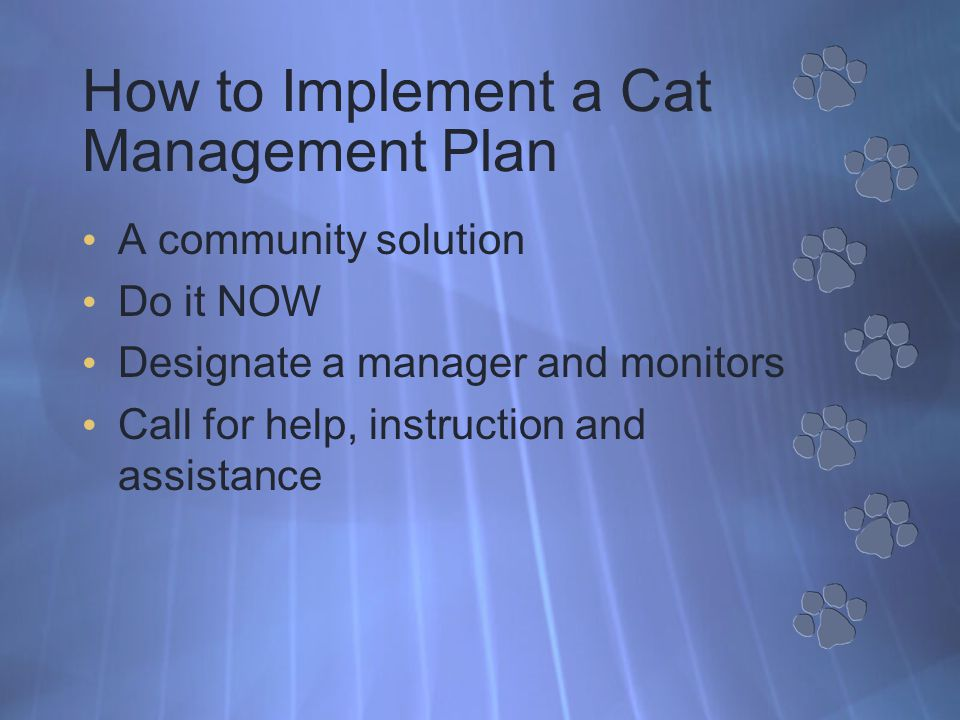 How to Implement a Cat Management Plan A community solution Do it NOW Designate a manager and monitors Call for help, instruction and assistance
