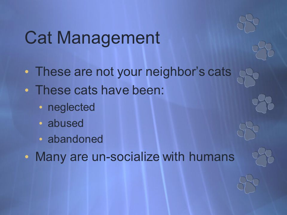 Population Reduction Plan Population reduction through sterilization Stabilizes cat population Reduces birth rate No new kittens born Nuisance issues associated with mating behavior are practically eliminated