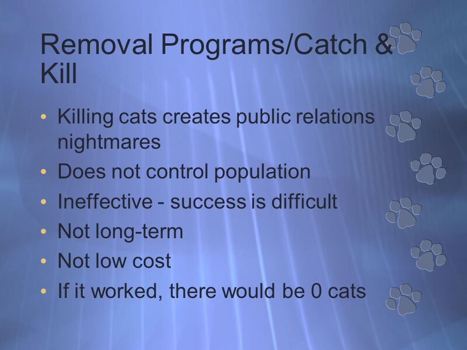 Feeding Station Cat management plan includes set-up and maintenance of feeding station Why.